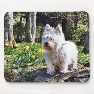 White Terrier Nature Walk Mouse Pad