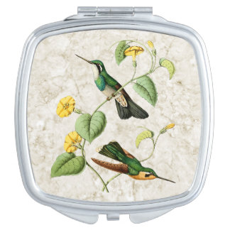 White Throated Mountain Hummingbird Compact Mirror