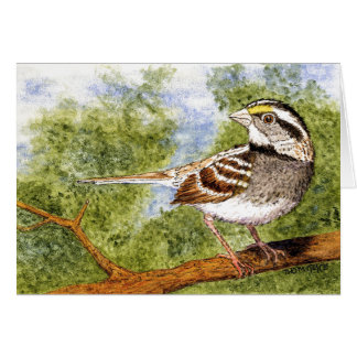 White-Throated Sparrow Greetings Card