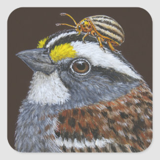 white-throated sparrow stickers