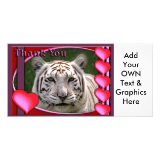 white-tiger-b-00098-TKU Photo Cards