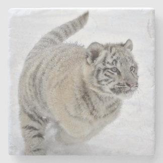 White Tiger Cub Stone Coaster