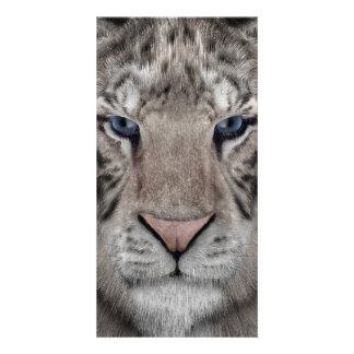 White Tiger Custom Photo Card