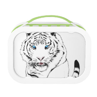 White Tiger Drawing Lunch Box