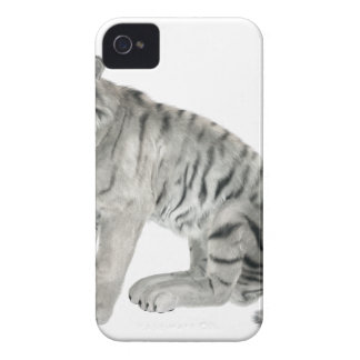 White Tiger Looking to the Front iPhone 4 Covers