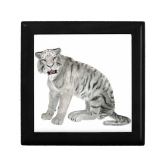 White Tiger Looking to the Front Trinket Box