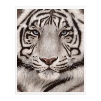 White Tiger Painting Acrylic Print