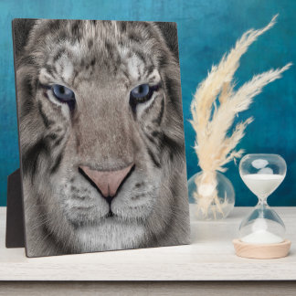 White Tiger Plaque