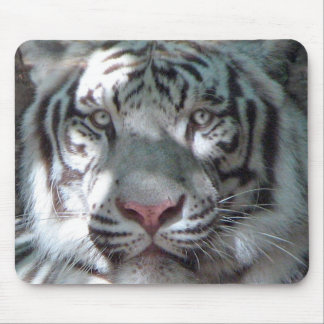White Tiger Portrait Mouse Pad