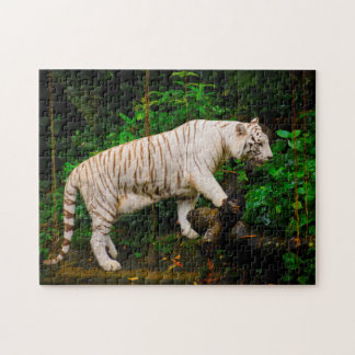 White Tiger Singapore. Jigsaw Puzzle