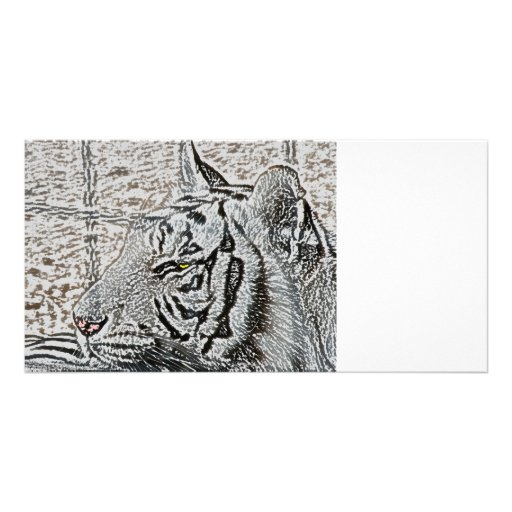 white tiger sketch yellow eye customized photo card