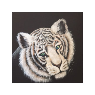 White Tiger Stretched Canvas Print