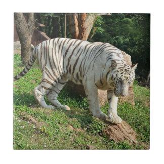 White Tiger Tile