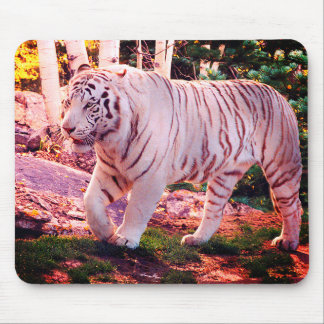 White Tiger Walking 2 - Mouse Pad
