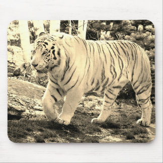 White Tiger Walking 4 - Mouse Pad