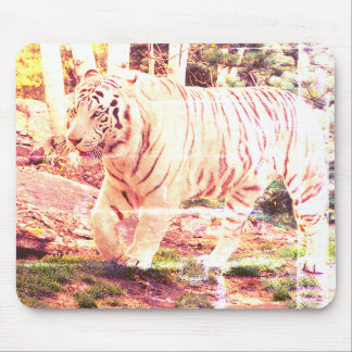 White Tiger Walking - Mouse Pad