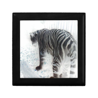 White Tiger wild animal photograph Trinket Box