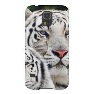 white tigers blue eyes galaxy s5 case
