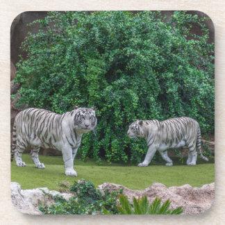 White tigers hard plastic coasters