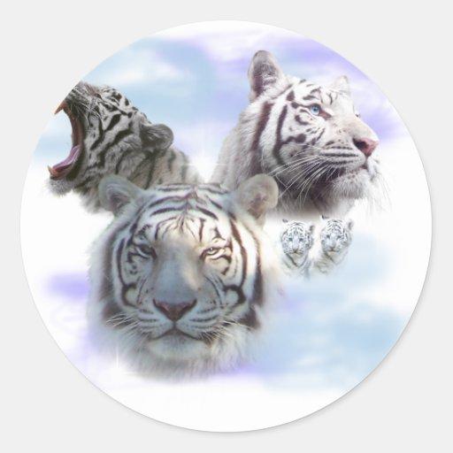 White Tigers Round Sticker