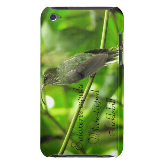 White-tipped Sicklebill Barely There iPod Cover