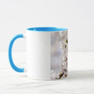 White tree blossom in springtime mug
