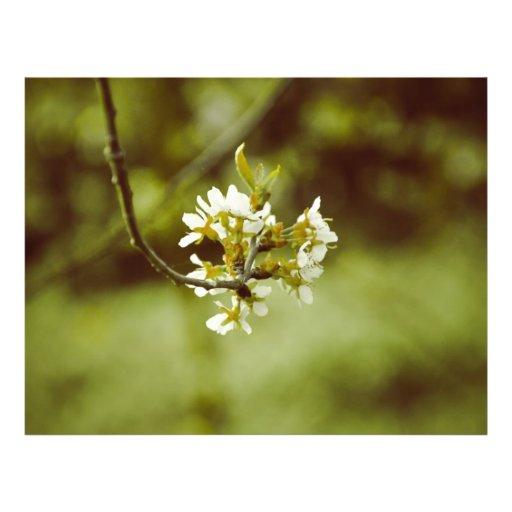 White tree flower flyer design