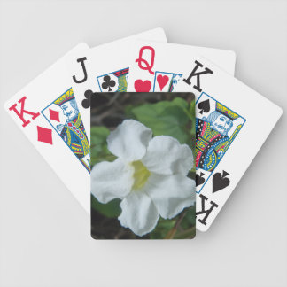 White Tropical Flower Found on Fiji Bicycle Playing Cards