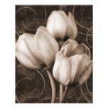 White Tulip Flowers Sepia Black Background floral Photograph
