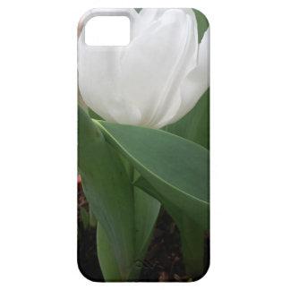 White Tulip iPhone 5 Covers