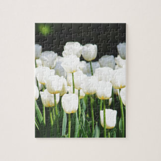 White Tulip Jigsaw Puzzle