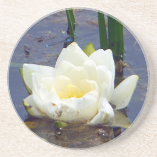 White Water Rose Drink Coasters