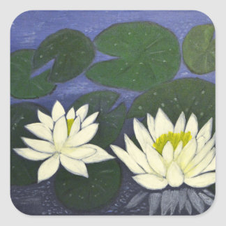 White Waterlily Flowers in a Pond. Square Sticker
