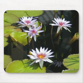 White Waterlily Mousepad