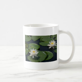 White Waterlily Mug