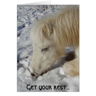 White Welsh Pony Asleep Card