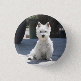 White West Highland Terrier Sitting on Sidewalk 1 Inch Round Button