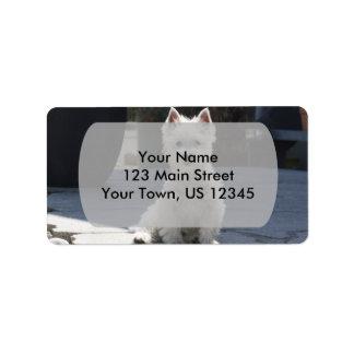 White West Highland Terrier Sitting on Sidewalk Label