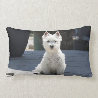 White West Highland Terrier Sitting on Sidewalk Lumbar Pillow