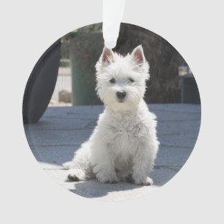 White West Highland Terrier Sitting on Sidewalk Ornament