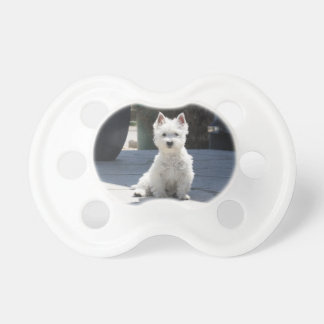 White West Highland Terrier Sitting on Sidewalk Pacifier
