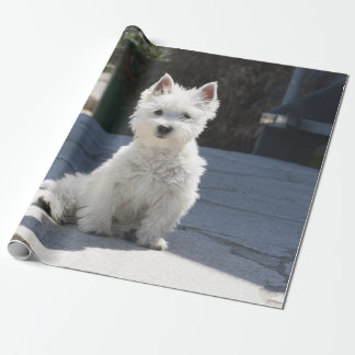 White West Highland Terrier Sitting on Sidewalk Wrapping Paper