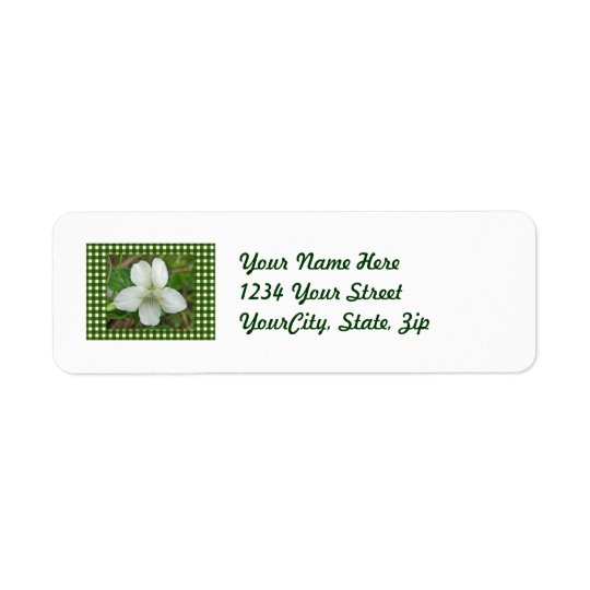 White Wild Violet Coordinating Items