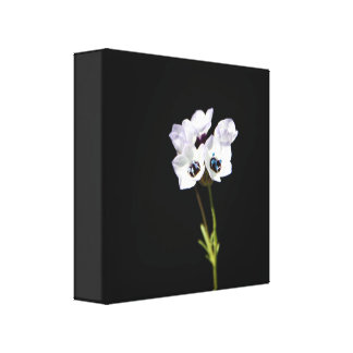White Wildflower Canvas Print