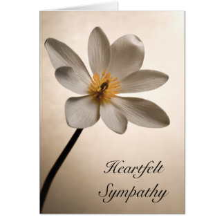 White Wildflower Sympathy Card