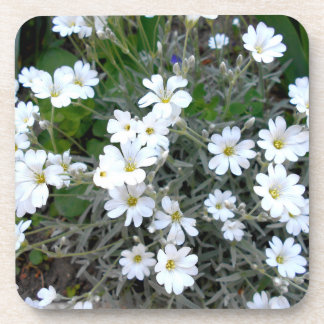 White Wildflowers Drink Coaster