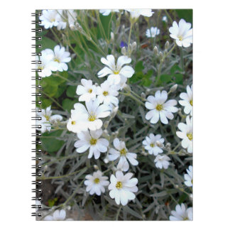 White Wildflowers Notebooks