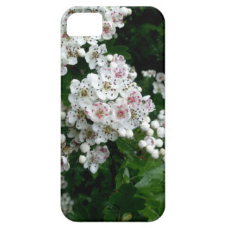 White Wintery Flowers iPhone 5 Cases