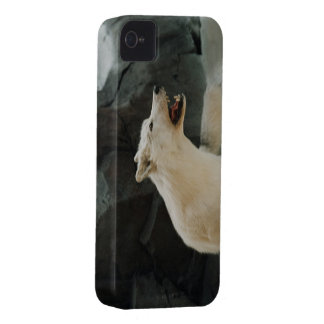 White Wolf Case-Mate iPhone 4 Case