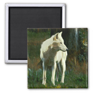 White Wolf Painting Square Magnet